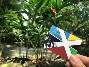 #NZIRIA #Jamaica Blue Mountains
